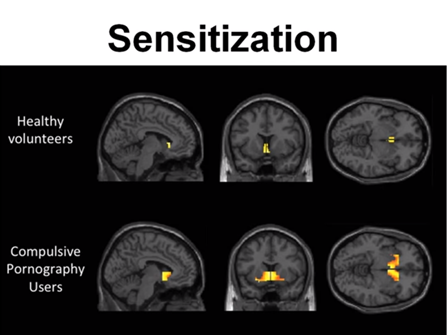 7. Sensitivisation